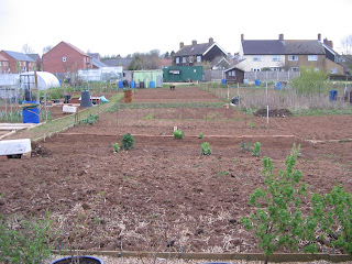 Second half of the allotment.