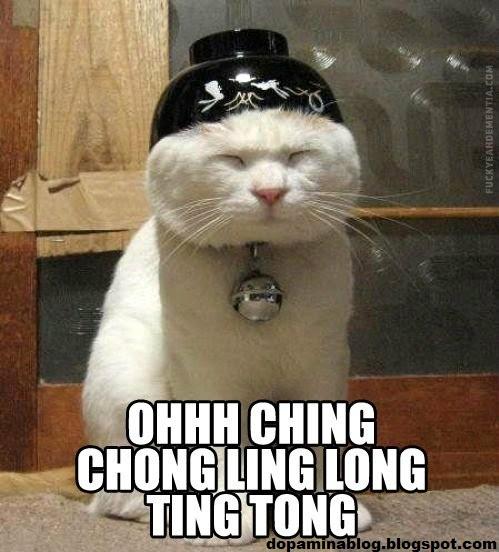 [Imagem: gato+chines.jpg]