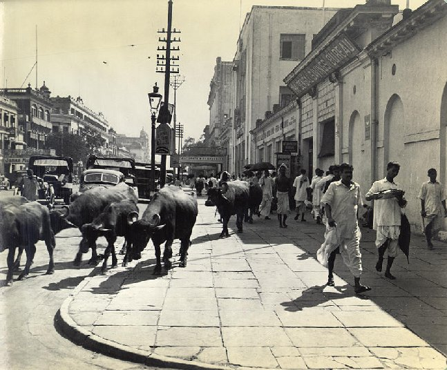 Old India India Photo Gallery