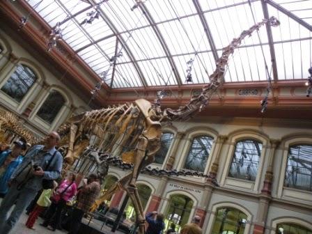 Museum fur Naturkunde in Berlijn