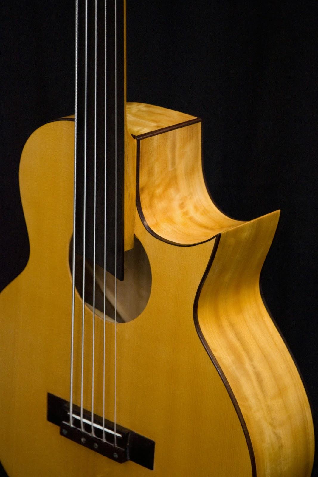 http://2.bp.blogspot.com/-zpPMnWIHbSs/S6pB9ohnMvI/AAAAAAAAp98/tpeffprJjYg/s1600/5-string+electro+acoustic+bass%252C+cutaway.JPG