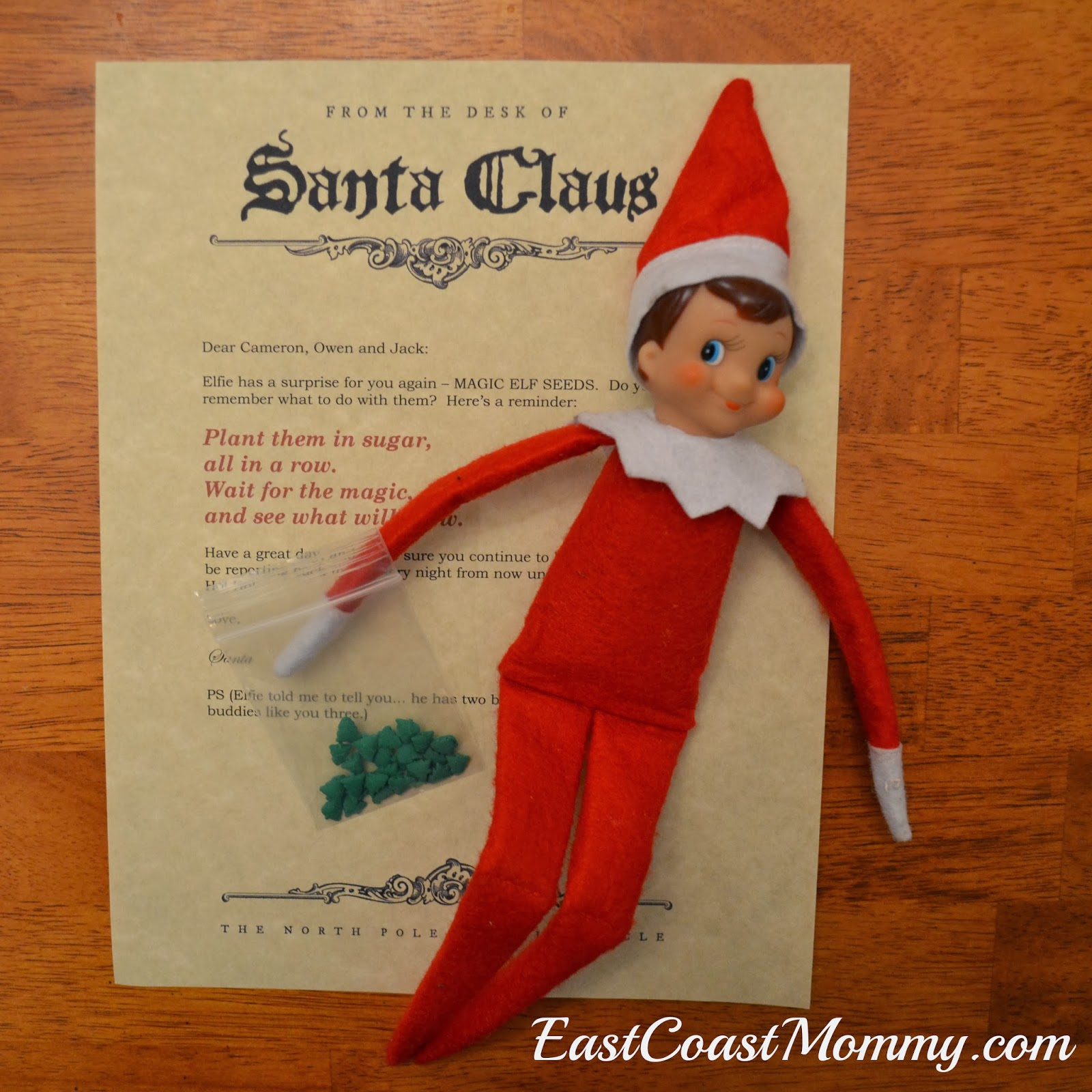 east coast mommy elf on the shelf gift magic elf seeds