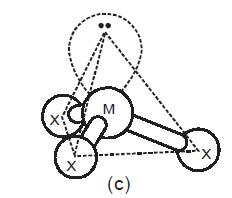 c. bentuk molekul NH3