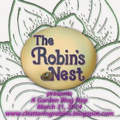 Robim's Nest