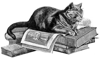 drawing of cat lying atop short stack of old books