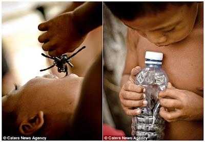 Tarantula Jadi Santapan Anak-anak di Kamboja