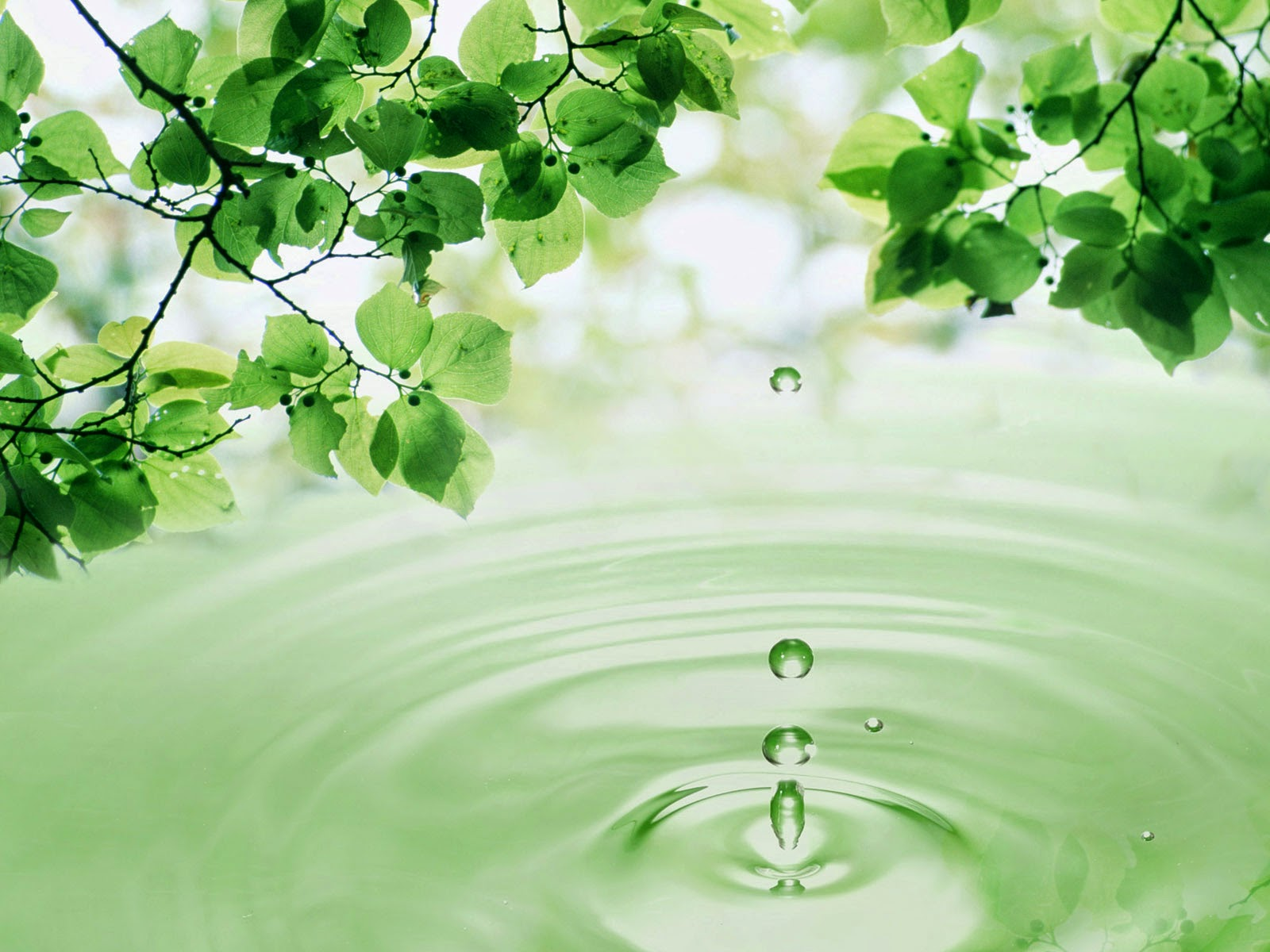 Water Drio Widescreen