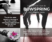 Las 10 áreas clave de Bowspring.