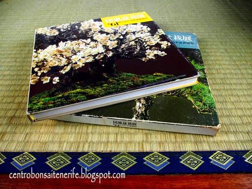 Centro bonsai tenerife libros usados de la kokufu bonsai - Libros de bonsais ...
