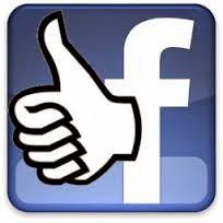 Auto Followers Facebook 2014 Real Human di Jamin 100% Aman