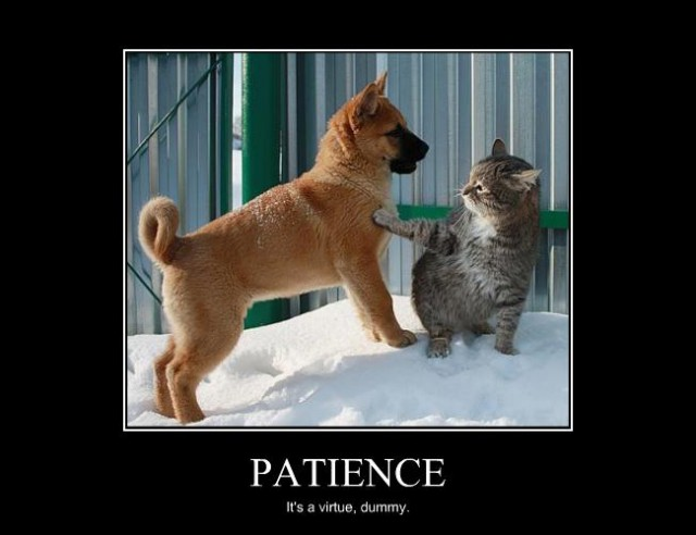 Patience Is A Virtue Quotes Quotesgram