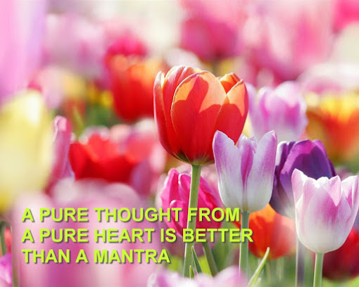 Pure Thought