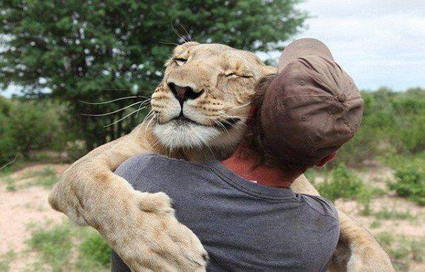 Смешные фото животных (19 фото)