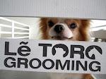 Letoro Grooming