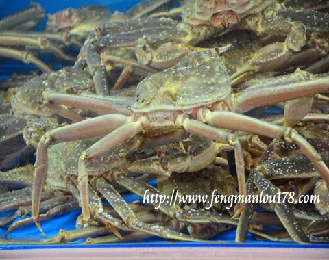 济州岛蜘蛛蟹