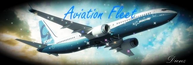 Aviation fleet