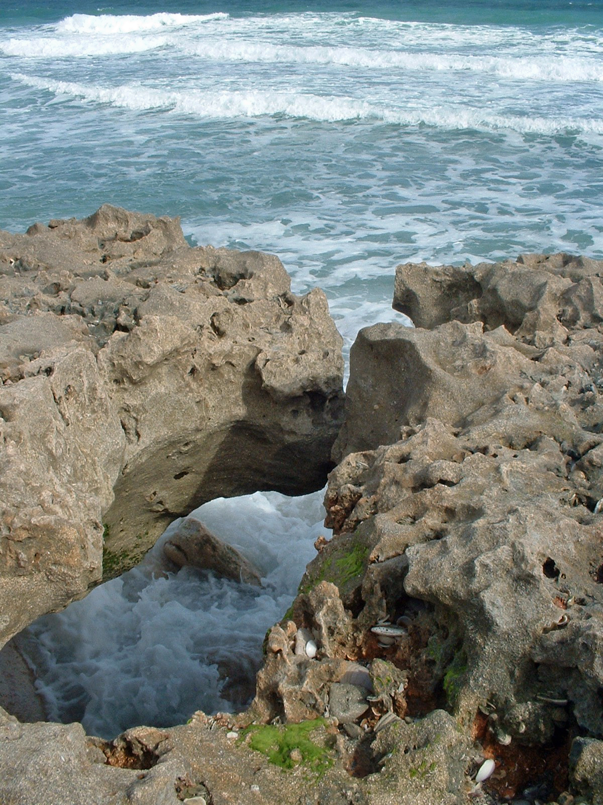 South florida guy blowing rocks beach hobe sound next visit ill plan a bit better and bring an umbrella picnic basket and tide chart to enjoy this nature show geenschuldenfo Images