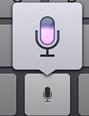 Dictate New iPad