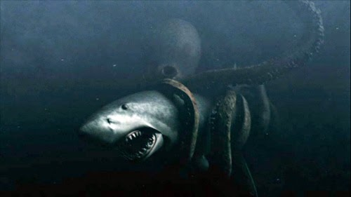 a research on the elusive giant squid one of the biggest sea creatures Just how big are the biggest creatures in the  the human is scaled for comparison with the sea creatures  the largest known giant squid was about 40 feet.