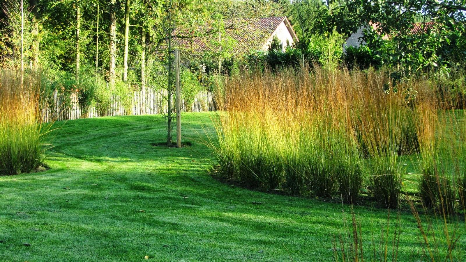 Henri cruysberghs de wonderen van de natuur - Creeren van een tuin allee ...