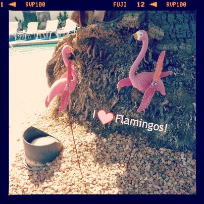 Flamingo Fancies - cool flamingo print buys for girls this summer V. I. BUYS, flamingos, girls fashion, home buys, zara home, fashion, summer style, fashion trends, new trends, girls clothes, flamingo print,
