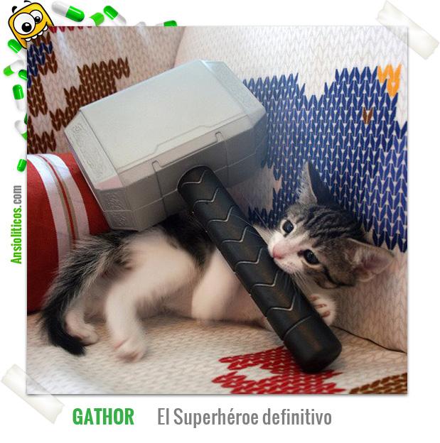 Chiste de Gatos: GaThor el superhéroe