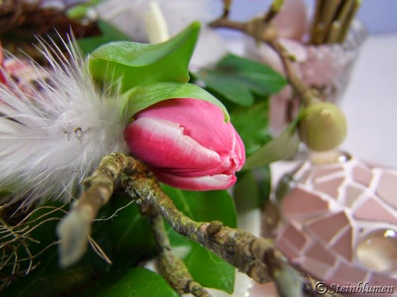 tulpen und federn
