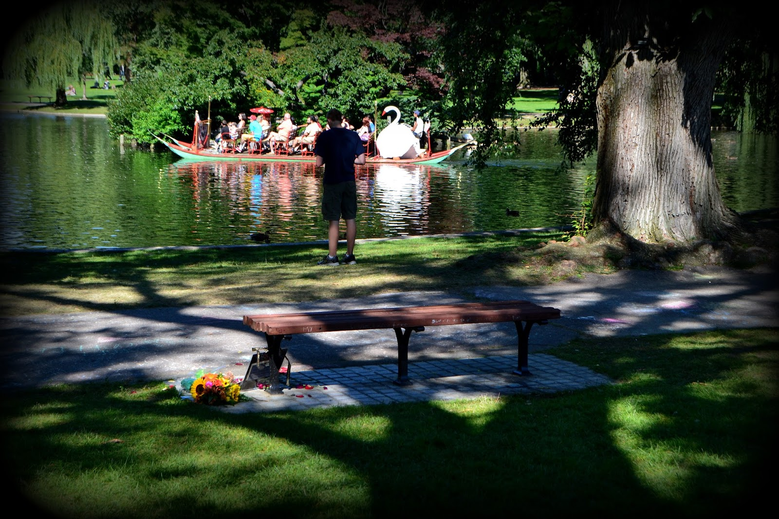 good will hunting, bench, boston public garden, swan boats, robin williams