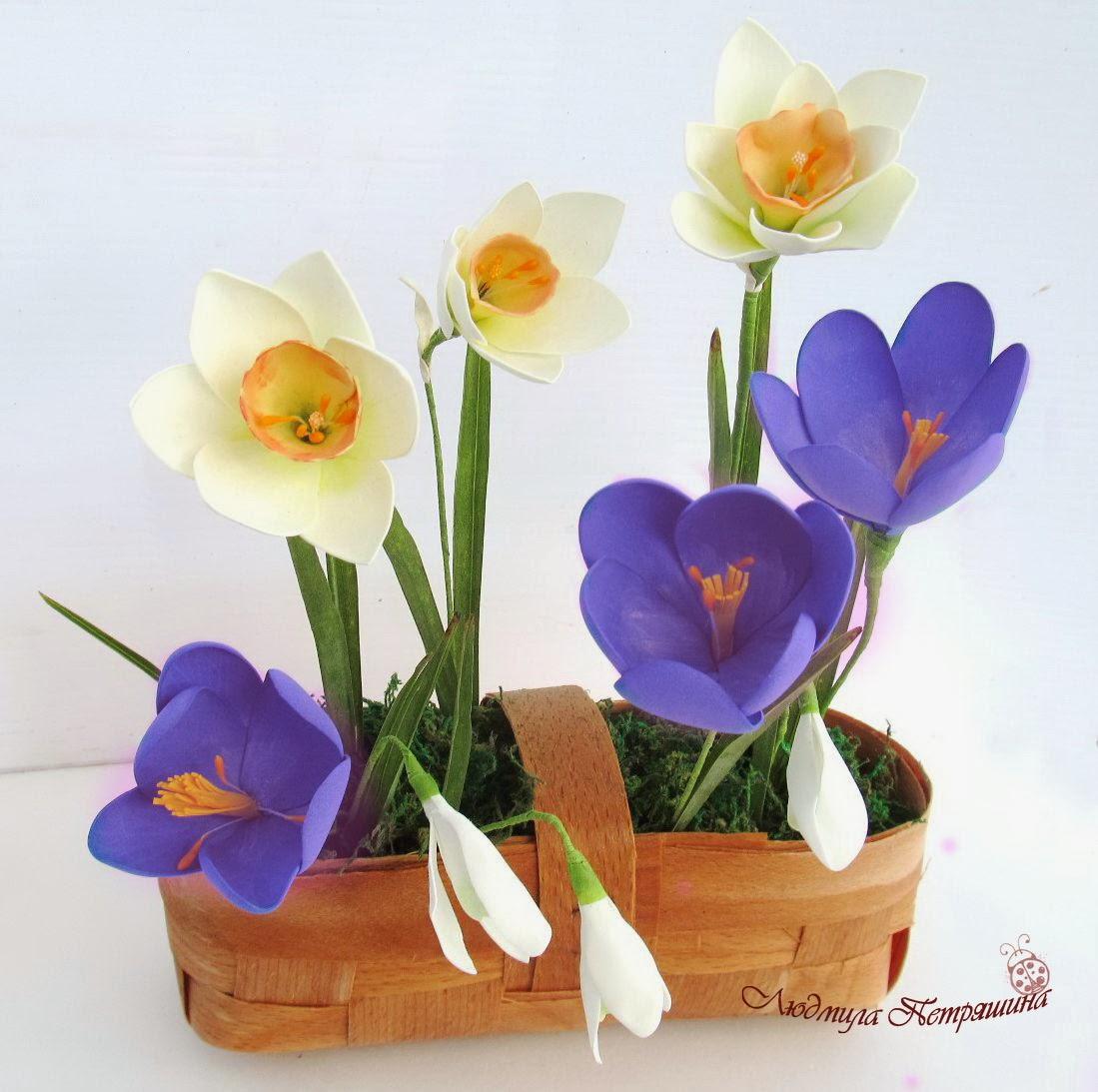 цветок в кашпо фото