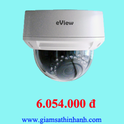 Camera IP Dome Eview NWD13