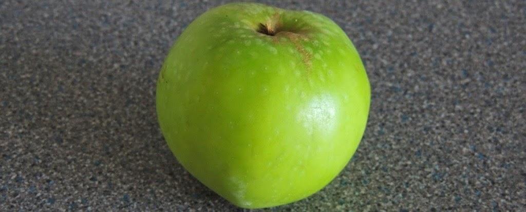 Garden Tool Set: Anatomy of an apple - A Short Study