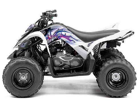 2013 Yamaha Raptor 90 ATV pictures. 480x360 pixels