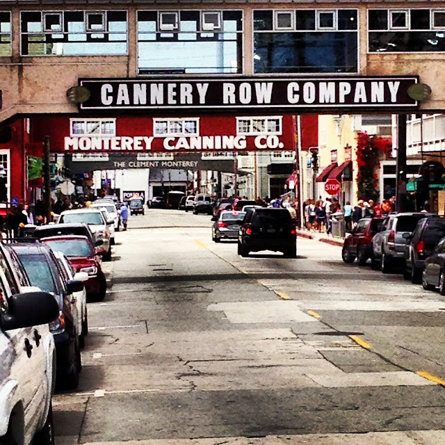 virtues and graces and laziness and zest reflecting on the novel cannery row today