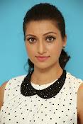 Hamsa Nandini Glamorous photos-thumbnail-16