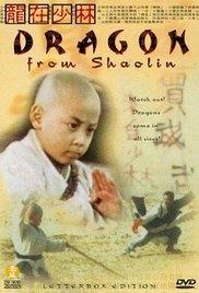 Rồng Tại Thiếu Lâm - Dragon from Shaolin (1996)