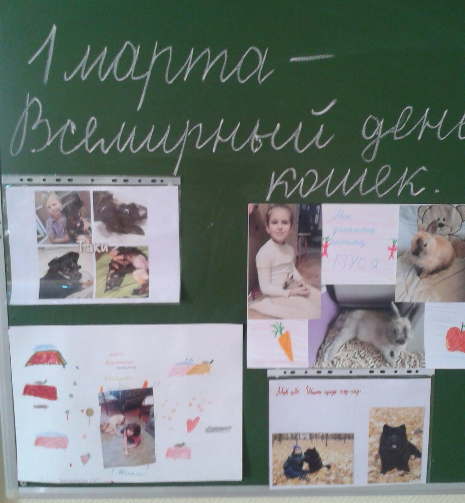 """Фотовыставка """"1 марта - день кошек""""."""