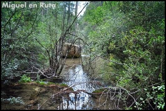 Nacimiento-del-Río-Cuervo