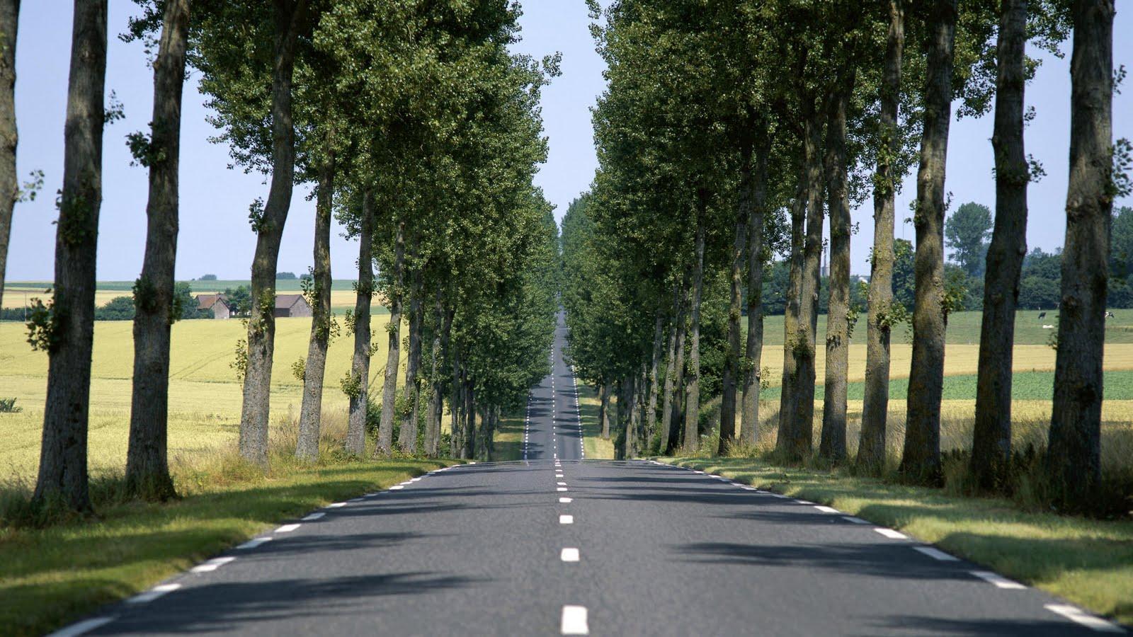 http://2.bp.blogspot.com/-zvkMI29jePs/TkEkogiL2OI/AAAAAAAAAOk/5fbbjygRufY/s1600/A-New-Perspective.jpg