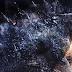 Trilogia de Godzilla é confirmada