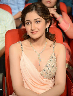Telugu Actress Sayesha Saigal Pictures at VV Vinayak Movie Opening  59.JPG