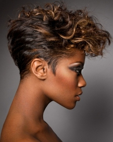 Short Black Curly Haircut 2014