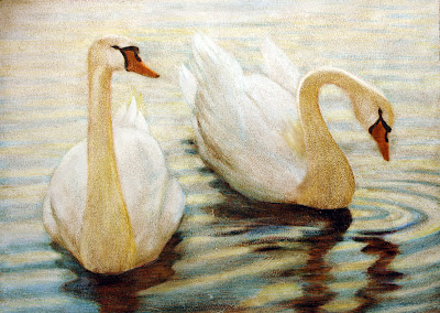 Cisnes-técnica-mista-by-Silvia-Reis