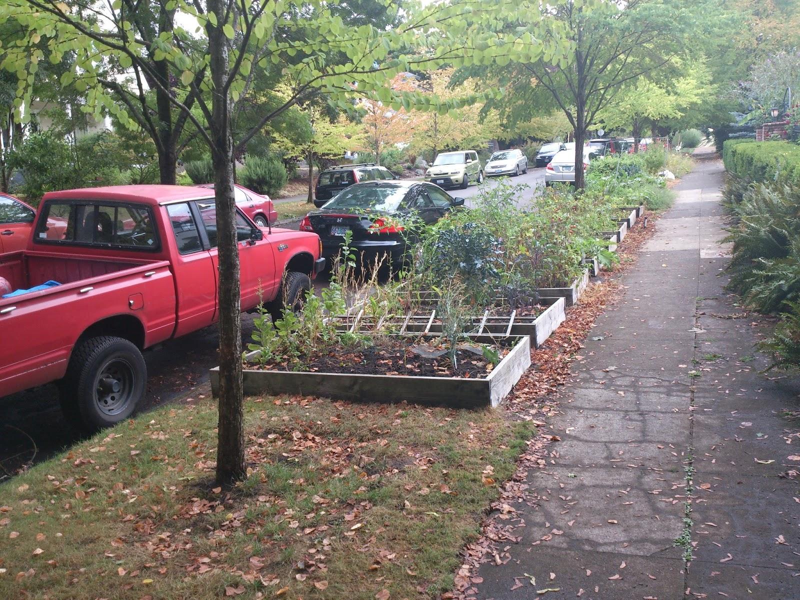 Safegrowth Magic Sidewalk Gardens