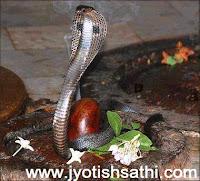 http://2.bp.blogspot.com/-zwyIrXmNHP0/UfigWNcqjBI/AAAAAAAACcg/H3r1bmE5ZSs/s200/Shiva+&+Shrawan+(1).jpg