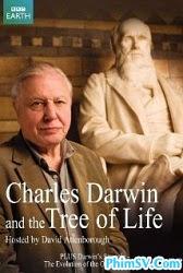 Charles Darwin Và Thuyết Tiến Hóa - Charles Darwin and the Tree of Life