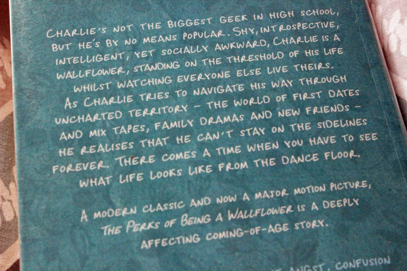 The Perks Of Being A Wallflower Blurb