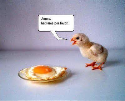 algunas imagenes infantiles graciosas para que rian a carcajadas