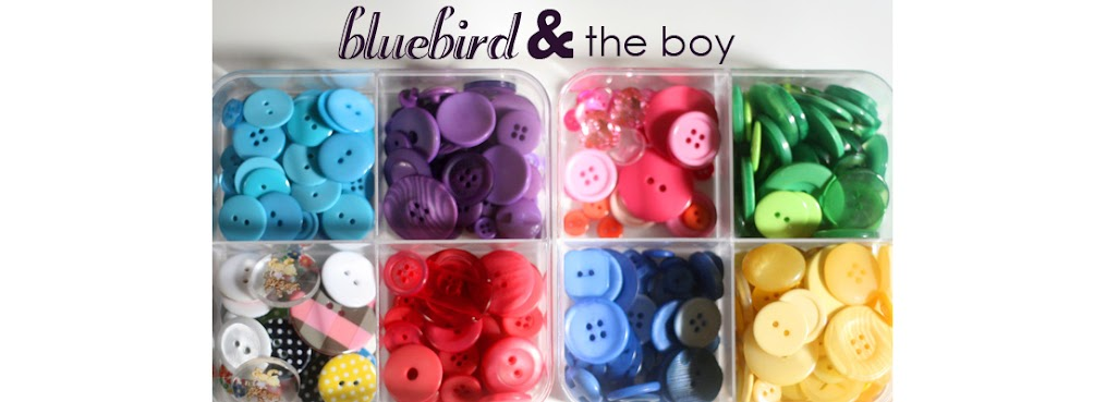bluebird & the boy