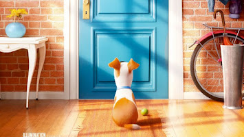 Pets - A Vida Secreta dos Bichos. Estreia nos cinemas no dia 25 de agosto.