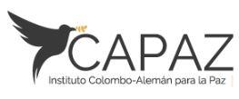 Instituto Capaz